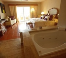 Junior Suite Garden View Excellence Punta Cana 5*