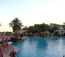 Главный бассейн Grand Rotana Resort & Spa 5*