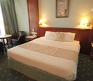 Standard room Sharjah Grand Hotel 4*