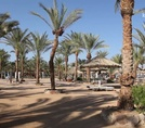 Пляж Hilton Sharm Dreams Resort 5*